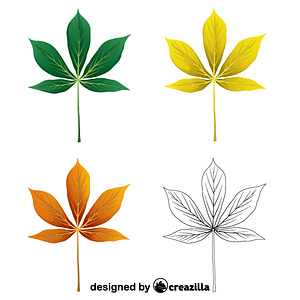 Yellow buckeye leaves vector
