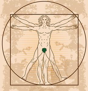 Vitruvian Man by Leonardo Da Vinci vector