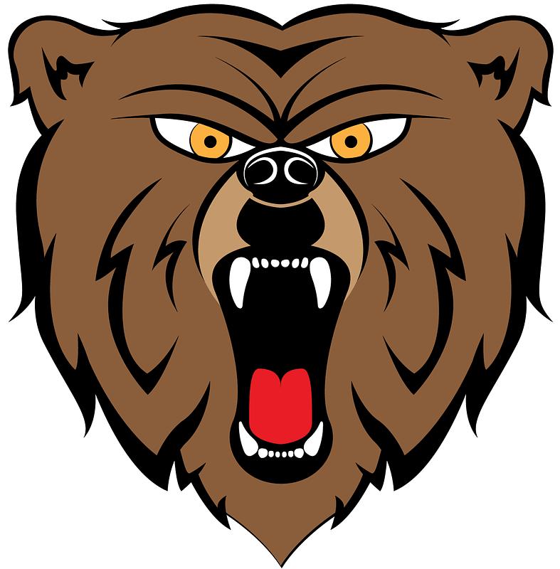 Bear Mascot Head Logo vector