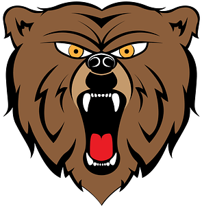 Bear Mascot Head Logo vector