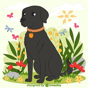 Black lab vector