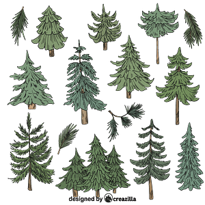 Set of Evergreen tree vector