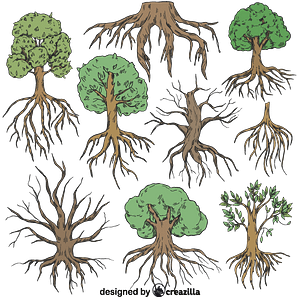 Set of Tree with roots vector