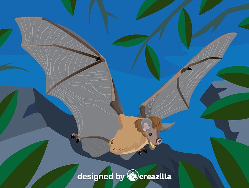 Spectral bat vector