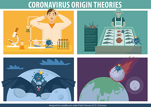 Векторное изображение: Coronavirus Origin Theories poster