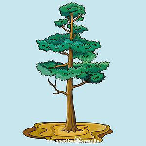 Vector de Pine tree
