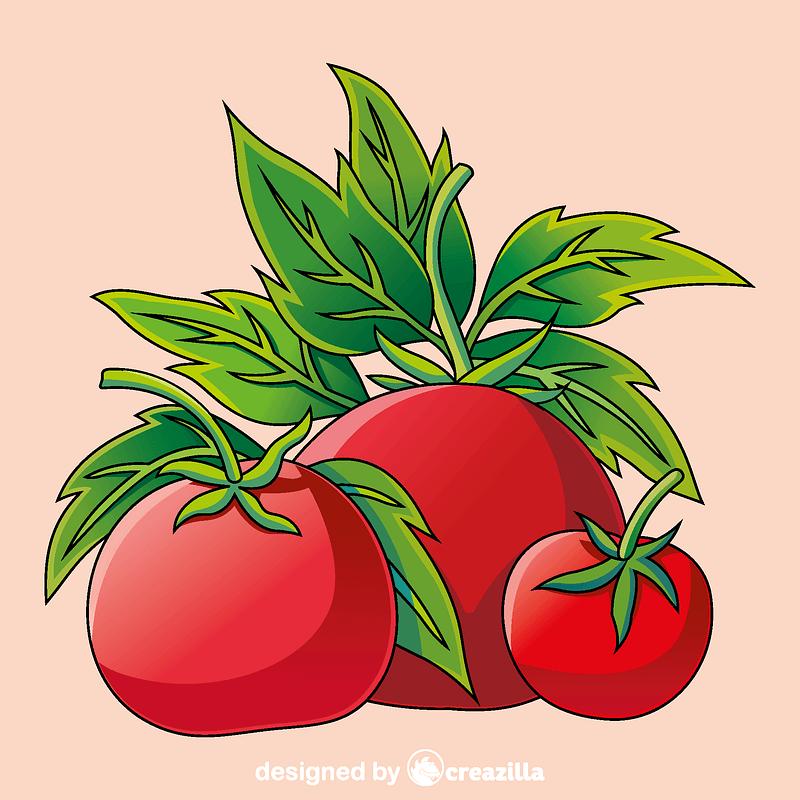 Vetor de Tomato