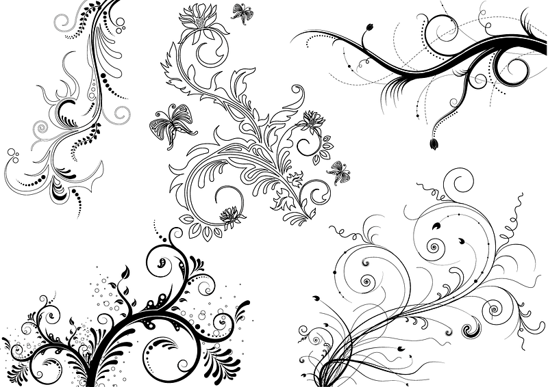 5 Floral Ornaments Brushes vector