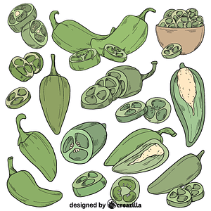 Set of jalapeno vector