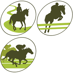 Set of Equestrian Labels with Jockey Riding Horse vector