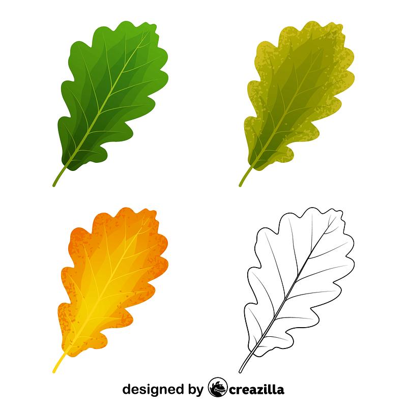 Sessile oak leaves vector