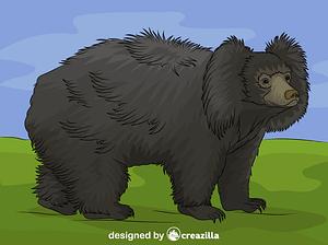 Sloth Bear vector