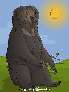 Sun Bear vector