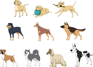 Set 4 of Cute Dogs vector