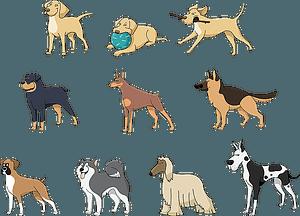 Set 4 van schattige honden vector