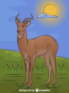 Uganda Kob Antelope vector