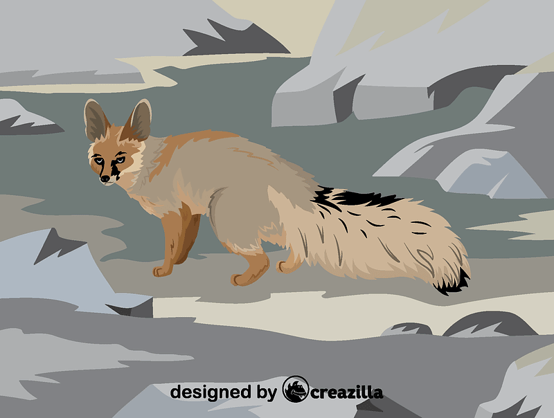 Blanford's fox vector