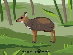 Immagine vettoriale di Philippine mouse-deer