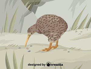 Immagine vettoriale di Great spotted kiwi