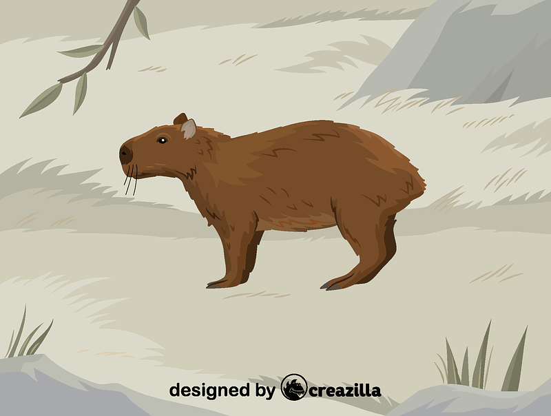Lesser capybara vector
