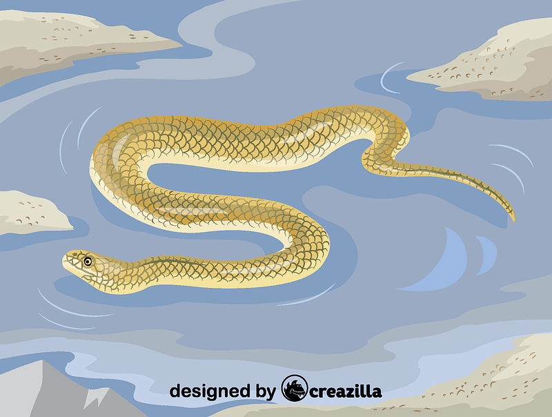 Beaked sea snake vector