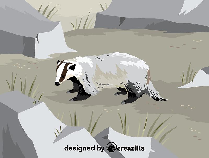 Asian badger vector