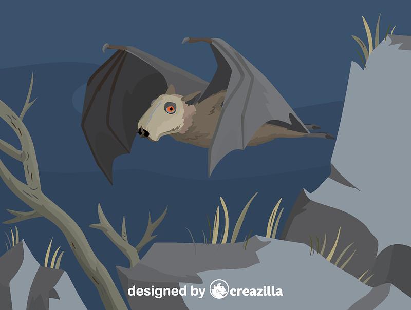 Hammer-headed bat vector