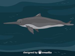 Immagine vettoriale di La Plata dolphin
