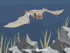 Immagine vettoriale di White-winged vampire bat