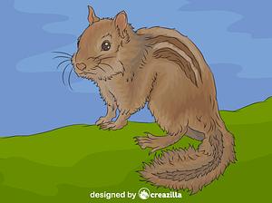 Chipmunk vector