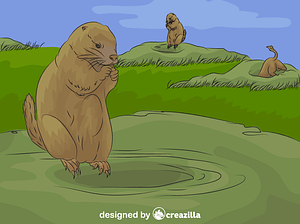Prairie Dog vector