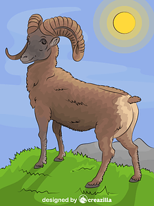 Mountain Bighorn Sheep vector