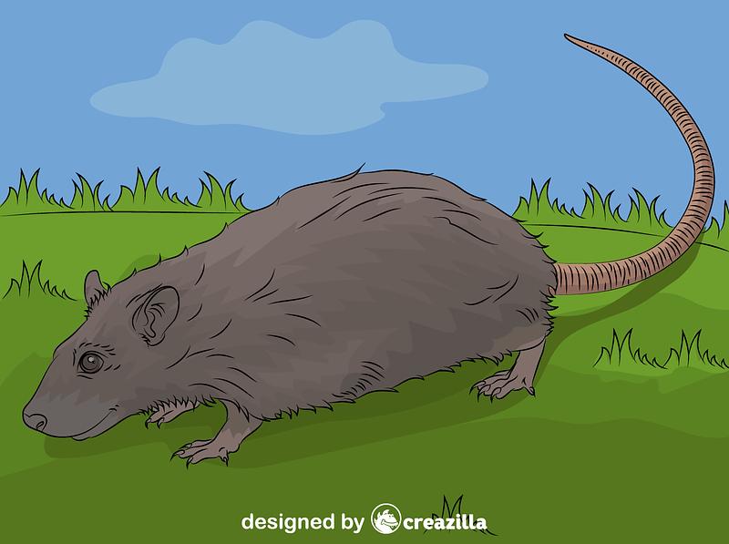 rat vector free download creazilla https creazilla com pages 4 license information