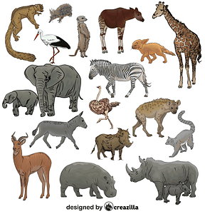 Set of African Safari Animals vector