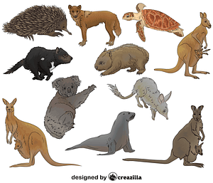 Set of Australian Animals vector