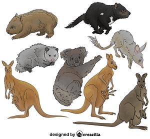 Set of Marsupial vector