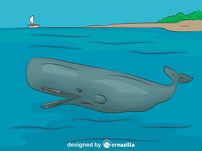Sperm Whale vector