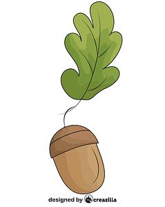 Oak Leaf and Acorn vector