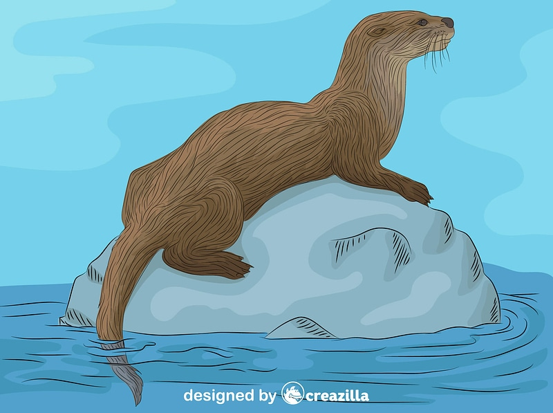 River Otter vector