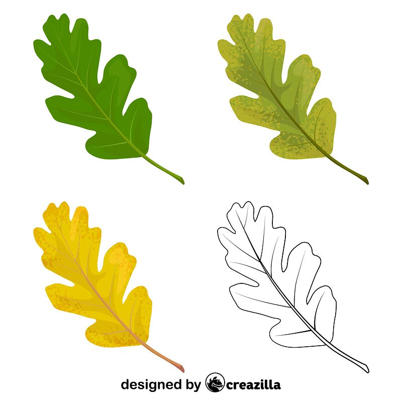 Valley oak leaves vector