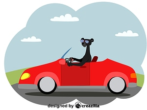 Panther and convertible vector