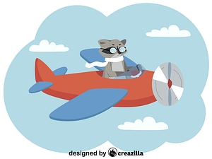 Racoon and plane vector