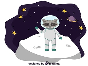 Animals in space - raccoon vector