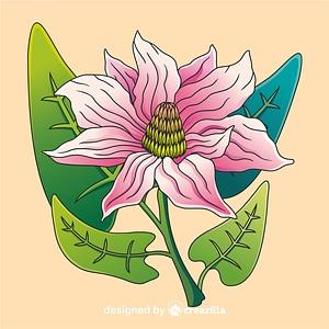Vector de Magnolia