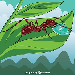 Meat Ant vector