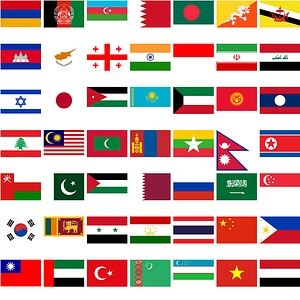 Flags of Asian Countries vector
