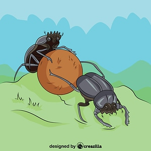 Dung Beetles vector