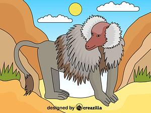 Baboon vector