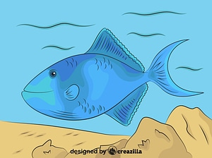 Redtoothed Triggerfish vector