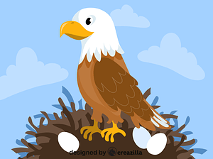 Bald eagle in a nest vector